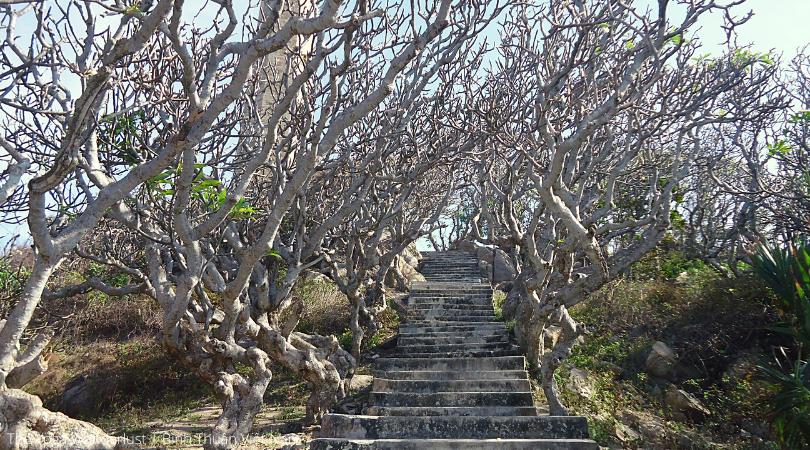 Du lịch Bình Thuận, Sài gòn, La gi, Bầu Trắng, Cổ Thạch
