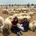 Đến Đồng Cừu – Suối Nghệ