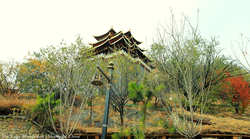 Nhật Kí Shangrila – Đến Shangrila Đi Đâu Và Làm Gì